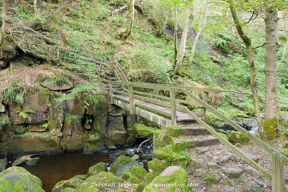 Wooden footbridge across Burbage Brook in the forested rocky river valley of Padley Gorge, Longshaw Estate, Peak District, Derbyshire, UK
