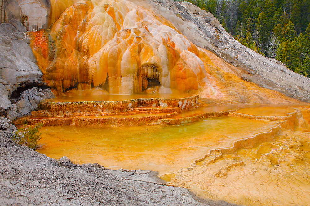 Mineral Deposits And Geyser Pool - Mammoth Terrace Hot Springs - Yellowstone National Park