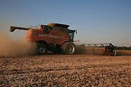 11: FARMS FINAL SOYBEAN HARVEST