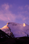 Pink dawn light on Mount Athabasca, Columbia Icefields area, Jasper National Park, Alberta, Canada
