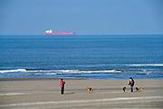 Nederland, Kijkduin, 7-2-2018Mensen lopen en wandelen op het strand langs de zee .Foto: Flip Franssen