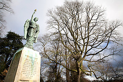 © Licensed to London News Pictures. 18/2/2016. Leominster, Herefordshire, UK. The battle of Verdun started on the 21st of February 1916. As a memorial to the battle, acorns from oak trees on the battle site were brought back and planted all over England. To commemorate the centenary the Woodland Trust are hoping to gather acorns from the trees and plant them. It is thought there are less than a dozen remaining trees. Pictured, the tree in Leominster next to the World War One Memorial. Photo credit : Dave Warren/LNP