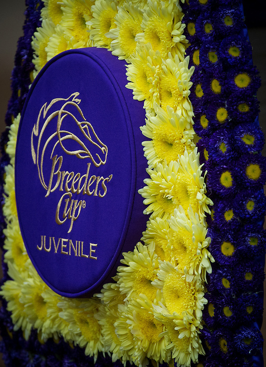 October 31, 2015:  Nyquist with Mario Gutierrez win the Breeders' Cup Juvenile at Keeneland Race Track in Lexington, Kentucky. Evers/ESW/CSM