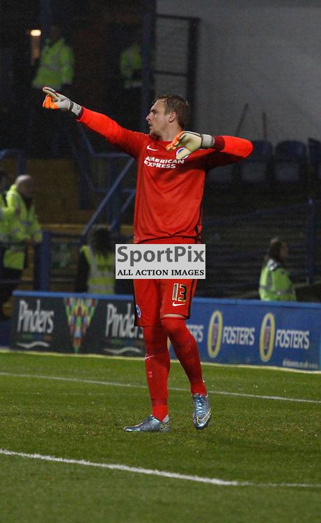 David Stockdale during Sheffield Wednesday v Brighton & Hove Albion, Tuesday 03 November 2015, Hillsborough Sheffield