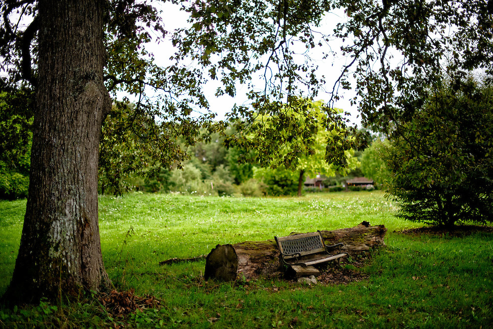 Bench under a tree in the park of the buddhist temple of the thoussand Buddhas (Paldenshanpa), near Tloulon sur Arroux, in Burgundy (France).