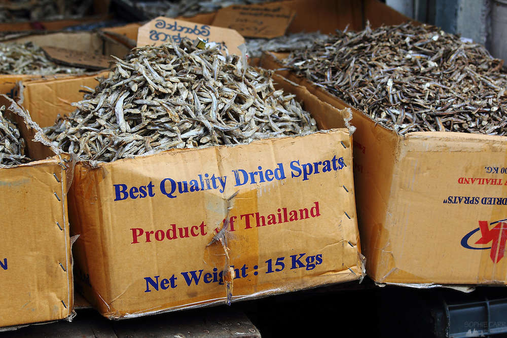 Dried sprats from Thailand for sale in Kandy, Sri Lanka's second largest city.