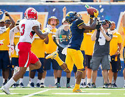 Sep 10, 2016; Morgantown, WV, USA; West Virginia Mountaineers wide receiver Shelton Gibson (1) makes a catch for a touchdown during the second quarter against the Youngstown State Penguins at Milan Puskar Stadium. Mandatory Credit: Ben Queen-USA TODAY Sports