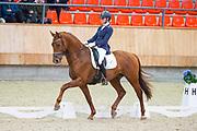 Saskia van Es - Jaccardo<br /> KNHS Indoorkampioenschappen 2019<br /> © DigiShots