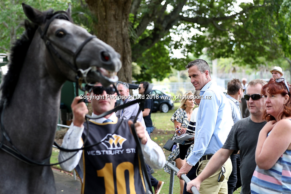 Rob Waddell at Auckland Cup Day, Ellerslie Racecourse, Auckland, New Zealand, Saturday, March 10, 2018. Copyright photo: David Rowland / www.photosport.nz