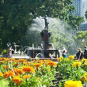Statue and water fountain in Hyde Park, Sydney.