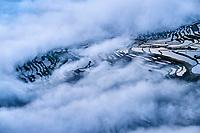 Chine, Province du Yunnan, Yuanyang, rizieres en eau // China, Yunnan, Yuanyang, terraced paddy-fields