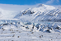 Hikers by Svínafellsjökull outlet glacier in winter, Southeast Iceland.