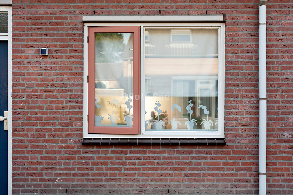 neat window of a house in the Netherlands