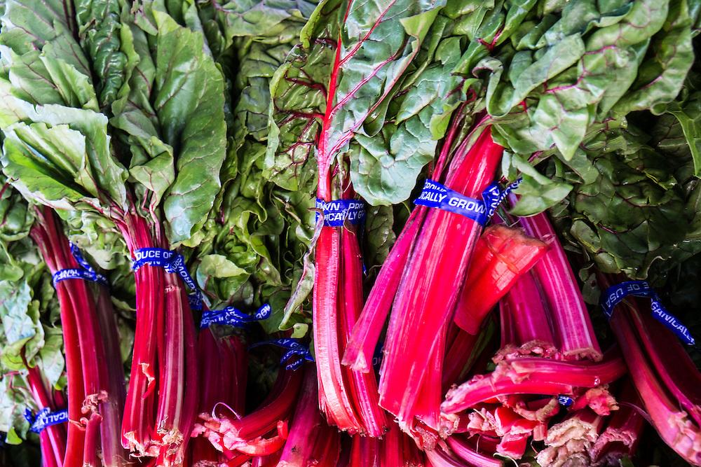 Rhubarb at the Farmers Market | June 30, 2013