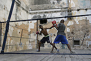 The Cuban boxing has a centennial long prestigious history written by exceptional champions, artists of the ring, whose legendary exploits , continue to live in the stories of fans. In 1962 Cuba had abolished professionalism in sports. Two years ago, driven by economic interests and attempt to stop the bleeding of athletes on the run from the island, sports authorities have announced participation in world boxing championship, the World Series of Boxing (WSB), which are not however a professional circuit because they remain part of the Olympic boxing. Thanks to a law passed a few years ago, with new economic conditions for the Cuban athletes, now, in addition to the contributions they receive from the state, the Cuban boxers will earn from their sport, 80% of the proceeds from participation in international sporting events.<br /> Meanwhile two years ago, in a small corner of Centro Habana, two blocks from the Capitolio and the square of big international hotels such as Telegraph and England, between the peeling walls of two buildings, in the space left by a collapsed building,<br /> thanks also the association Italian Malaika (Angel in swahili), there is a gymnasium de Boxeo, a gym of wooden planks recycled for the children of Centro Habana. In this neighborhood gym the talent and enthusiasm of dozens of children between 7 and<br /> 20 years is concentrated: Los Ninos de Cuba. Every day from 5 pm until late at night they chasing their dreams of success, with ethics, rigor and commitment, The facilities are not enough for everyone. Gloves and shoes alternate in the hands and feet of small boxeadores, which in turn &ldquo;peleano&rdquo; on the makeshift ring waiting to make the leap to the Rafael Trejo, another Boxing Gymnasium, in the heart of Havana Vieja, to participate in provincial and then national championships. From these gyms the best of the little boxers move to the EIDE (Escuelas de Iniciaci&oacute;n Deportiva Escolar) where future champions alternate traditional school education to the p
