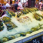 THA/Koh Samui/20160804 - Vakantie Thailand 2016 Koh Samui, Uitgestalde vis op een bed van ijs