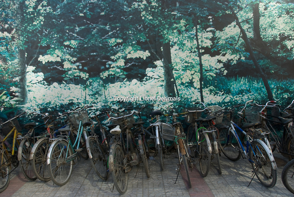 Parked bicycles in front of a poster representing a forest, Beijing, China.
