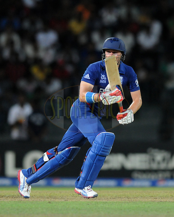 Luke Wright of England bats during the 6th match of WT20 between England and Afghanistan held at the Premadasa  International cricket stadium in Colombo on 21th September 2012..Photo by Pal Pillai/Sportzpics