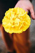 Supanniga flower