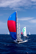 Rebecca sailing in the St. Barth's Bucket regatta, day three.