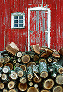A pile of drying fire wood is stacked by and old barn.