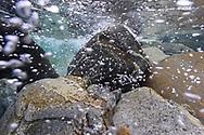 Underwater landdscape of the river Verzasca. Lavertezzo, Canton Ticino, Switzerland<br /> <br /> Impressionen der Verzasca an einem sch&ouml;nen Herbsttag im Oktober