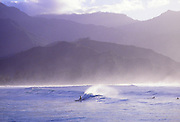 Surfer, Hanalei Bay, Kauai, Hawaii<br />