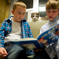 "(L-R) Samuel Trego and Ben Spiri read to ""Stewart,"" a cat up for adoption, during ""The Book Buddies Program"" at the Animal Rescue League of Berks County in Birdsboro, PA on February 11, 2014.  Children in grades 1-8 read to the cats as a way to improve their reading skills and gain confidence.  The shelter animals can be a non-evaluative presence that can provide support and comfort to participants without judging them.  Students showed sustained focus and maintained a higher state of awareness, as well as improved attitudes toward school, according to researchers at Tufts University.  Photo taken February 11, 2014.  REUTERS/Mark Makela  (UNITED STATES)"