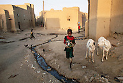 A young boy walks by two goats and a stream of raw sewage flowing through a street, Djenne, Mali. The culprit seems to be incremental progress; running water has been introduced into households in Djenne, but there is no sewage system to take care of the resulting effluent. Africa.