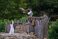 France, Vendée (85), Les Epesses, Parc du Puy du Fou, Le Bal des Oiseaux Fantômes // France, Vendée, Les Epesses, Parc du Puy du Fou, the birds show