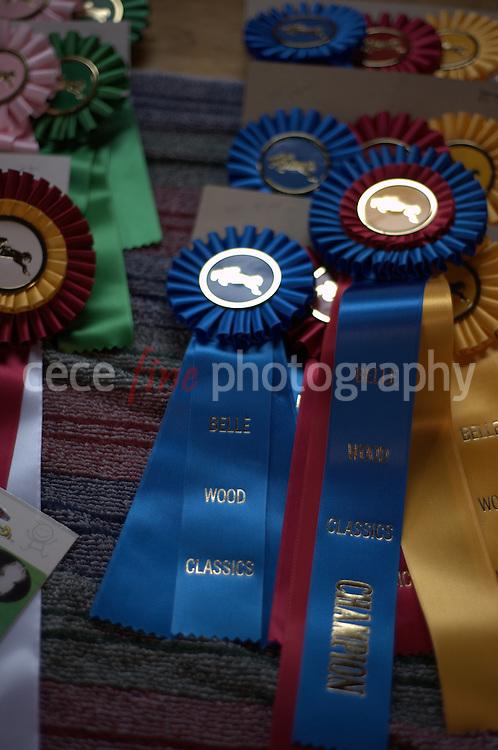 Belle Wood Horse Show 3/13/11
