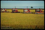Row of combines dances a ballet in late pm on Granja Bretanhas, rice rice farm;Rio Grande do Sul Brazil