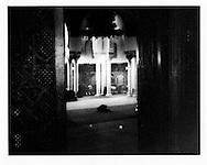 Men praying in Mosque of Paris, near Jardin des Plantes.