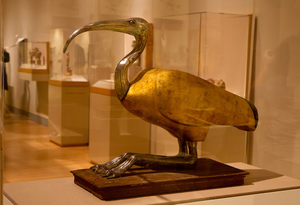 Golden leafed ibis from Ancient Egypt. Brooklyn Museum.