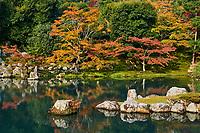 Japon, île de Honshu, région de Kansaï, Kyoto, Arashiyama, Tenryuji Temple, patrimoine mondial de l'UNESCO, jardin zen // Japan, Honshu island, Kansai region, Kyoto, Arashiyama, Tenryuji Temple, UNESCO world heritage site, zen garden