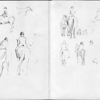 Sketchbook drawing horse show