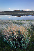 Paiute Lake and sagebrush, Hart Mountain National Antelope Refuge Oregon