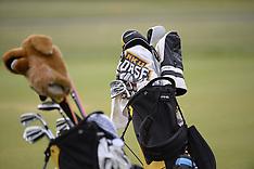 2014 Women's Golf Championship
