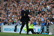 Brighton Manager Chris Hughton during the EFL Sky Bet Championship match between Brighton and Hove Albion and Bristol City at the American Express Community Stadium, Brighton and Hove, England on 29 April 2017. Photo by Bennett Dean.