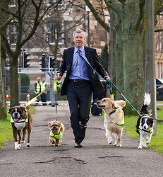 Pictured: Not sure who is takling who for a walk; Willie Rennie with Harvey (Boxer), Mercy (Llasa Apso),  Mack (golden retriever) and Kiera (Collie)<br /> <br /> The Scottish Liberal Democrat leader Willie Rennie highlighted analysis revealing the number of working days lost across Scotland due to depression as he met therapy animals from Canine Concern Scotland, a charity which supports people with mental health issues and other conditions. <br /> <br /> Ger Harley | EEm 31 March 2016
