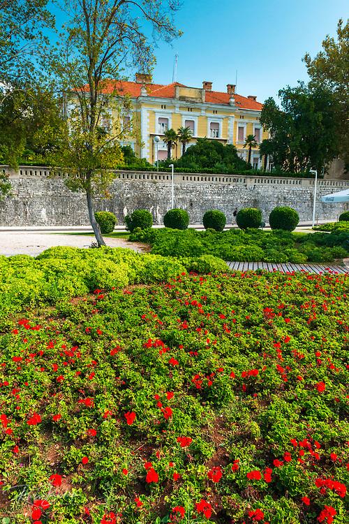 Estate and flowers on the promenade, Old Town Zadar, Dalmatian Coast, Croatia
