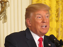 August 28, 2017 - Washington, DC, United States - US President Donald Trump answers a question during a joint press conference with Finnish President Sauli Niinistö holds on August 28, 2017, at the White House in Washington, DC. (Credit Image: © Kyle Mazza/NurPhoto via ZUMA Press)