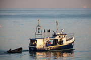 A British fishing boat arriving back into Folkestone Harbour at sunset after laying pots for crab and lobsters in the English Channel. (photo by Andrew Aitchison / In pictures via Getty Images)