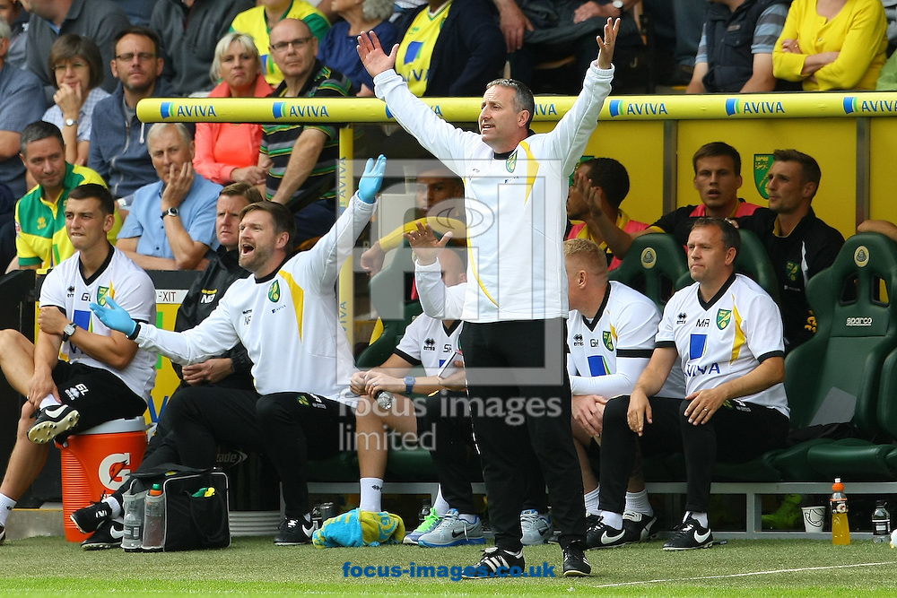 Norwich Manager Neil Adams during the Sky Bet Championship match at Carrow Road, Norwich<br /> Picture by Paul Chesterton/Focus Images Ltd +44 7904 640267<br /> 16/08/2014