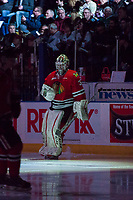KELOWNA, CANADA - APRIL 8: Cole Kehler #31 of the Portland Winterhawks enters the ice against the Kelowna Rockets on April 8, 2017 at Prospera Place in Kelowna, British Columbia, Canada.  (Photo by Marissa Baecker/Shoot the Breeze)  *** Local Caption ***