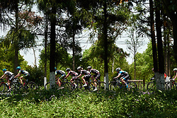BTC City Ljubljana in the trees at Tour of Chongming Island 2019 - Stage 3, a 118.4 km road race on Chongming Island, China on May 11, 2019. Photo by Sean Robinson/velofocus.com