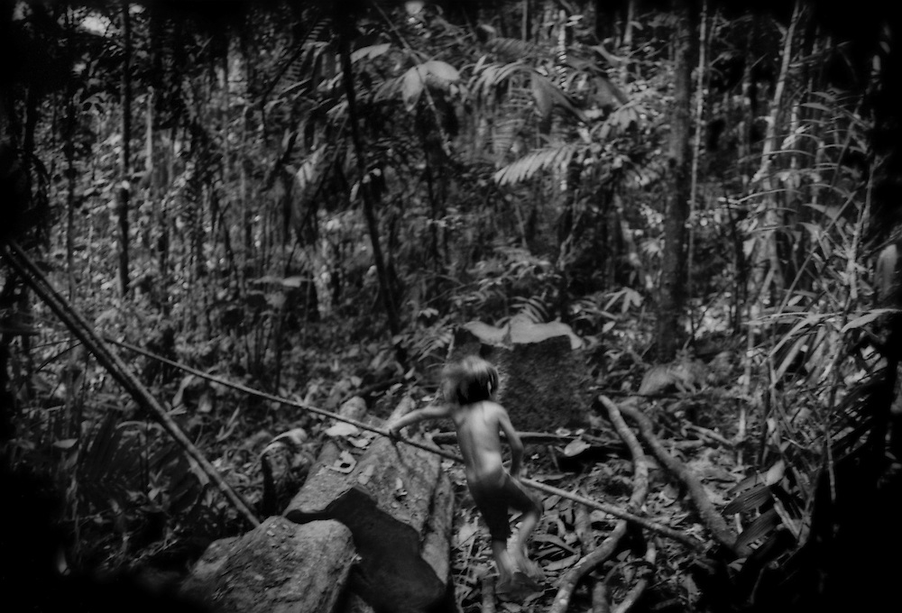 """Huaorani boy plays where his father cut down a single tree to build a new house.  The Huaorani all lived in the rainforest with little or no contact with the outside world until the Ecuadorian government encouraged Christian missionaries to draw them out, beginning in the mid-1950's with the disastrous """"Operation Auca"""" where 5 American missionaries were killed while trying to establish contact.  Still there is a 7,770 sq. km (3,000 sq. mile) Huaorani """"Intangible Zone"""" where entry to outsiders is forbidden without the permission of the Huaorani people.  The Taromenani and Tagaeri sub-groups of the Huaorani remain """"no contactos"""", or uncontacted peoples preferring no contact with the outside world.  Yawepare, south of Coca, Ecuador."""