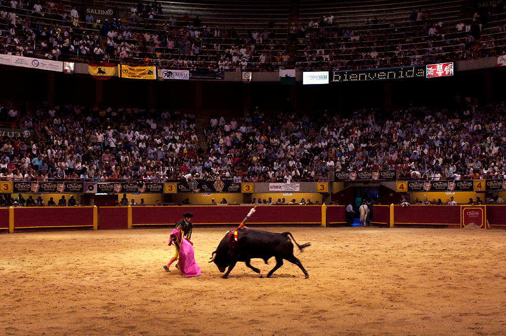 In the ring at La Macarena Stadium a matador practices his sport of bullfighting.  The Festival of the Bulls is a month long celebration of bullfighting in Medellin.