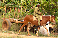 Man on mule in Las Coloradas, Granma, Cuba.