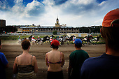 Horse Race in Moscow